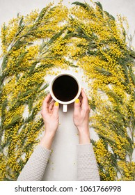 Woman's hands hold cup of coffee with yellow spring flowers mimosa on white concrete background view from above. Fashion flat lay style. Spring mood. Food art. Beautiful breakfast, top view.