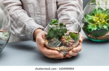 Woman's hands holding mini succulent garden in glass round florarium vase., copy space