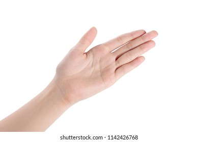 Woman's hands holding something empty front and back side, isolated on white background.