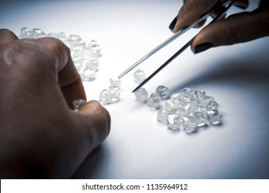Woman's hands inspecting rough diamonds with forceps.