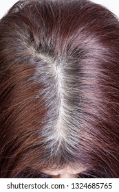 Woman's head with parted gray hair regrown roots. Going gray. Close - up.