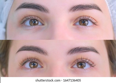 Woman's lashes after and before beauty procedure of eyelash lifting and laminating in beauty clinic, eyes closeup. Young woman in cosmetology clinic with open eyes. Lift of lash and eyelash.