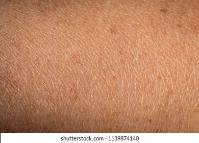 A Woman's Skin Close Up