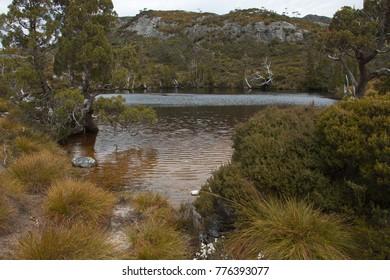 Wombat pool in Cradle Mountain NP in Tasmania