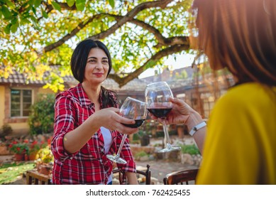 Women friends toasting red wine glasses at backyard patio