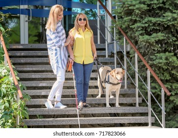 Women with guide dog on stairs