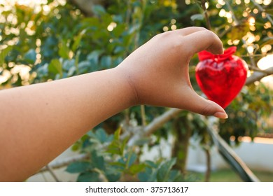 Women hand in heart form love Red heart hanging on tree