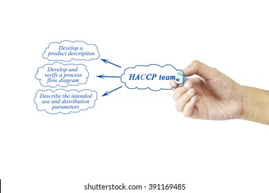 Women hand writing element of HACCP team for business concept and use in manufacturing(Training and Presentation)
