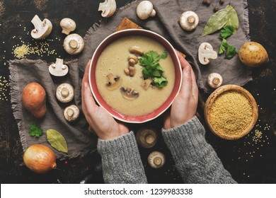 Women hands in a gray sweater holding a bowl of cream of mushroom soup. Hot winter soup on a dark rustic background. Top view, flat lay