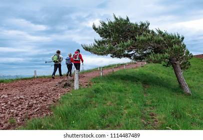 women hiking on the path