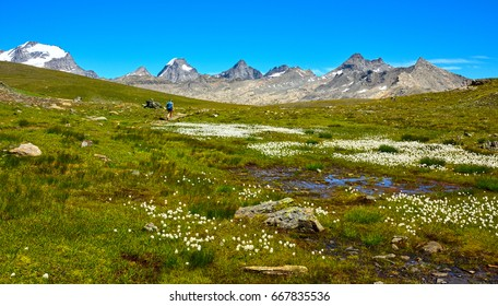 Women in mountain walking in the Nivolet pass on the Gran Paradiso National Park.