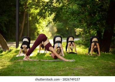 Women sits in yoga pose on grass, group training