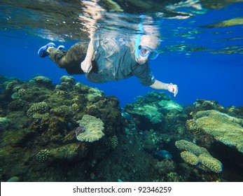 women at snorkeling in the Red Sea