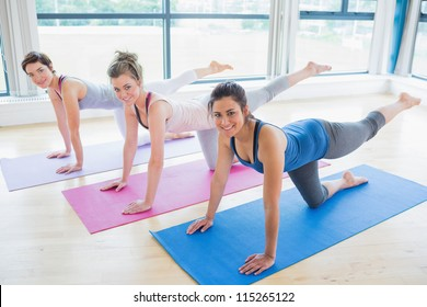 Women stretching on mats at yoga class in fitness studio