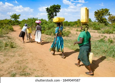 Women transport canisters water on their head in Uganda on 2017-03-18