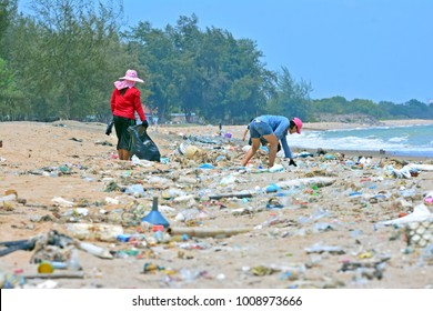 Women wearing gloves are cleaning the beach