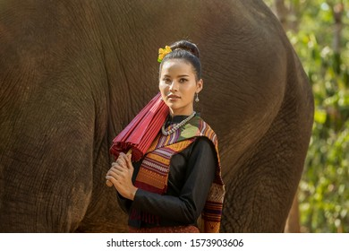 Women wearing native dresses holding a red umbrella and living with elephants. Asian woman and big elephant in the Forest. Elephant with beautiful girl in asian countryside, Surin, Thailand.