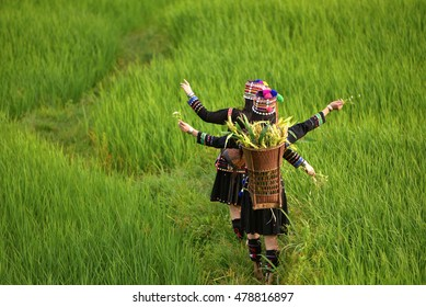 Women wore costumes of ethnic work in the fields of rice terraces .