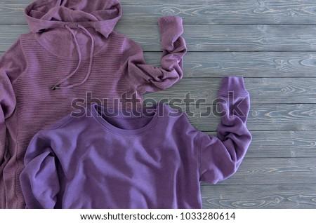 37e527ae1b0 Womens Clothing Violet Sweatshirt Hoodie On Stock Photo (Edit Now ...