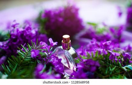 Women's Pink Perfume in Beautiful Bottle