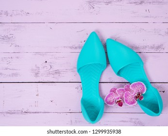 Womens shoes (flat sandals) on wooden background. Spring summer collection. Flat lay. Fashion concept. Template for online store, coupon, offer, promotion, discounts, gift card, deals