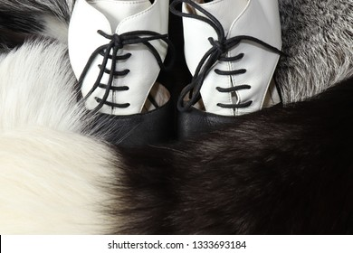 Women's vintage leather shoes with black laces with white top and black bottom on the background of women's Boas made of natural fur silvery black Fox with a fluffy tail with a white tip. Vintage phot