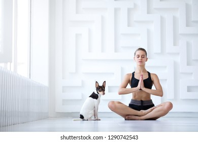 Women's yoga. Young beautiful girl in lotus position with her pet at home.