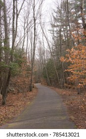 Wompatuck State Park in the fall