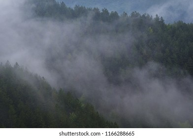 Wonderful atmosphere created by the fog in the mountains
