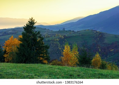 wonderful autumn landscape at dawn.  beautiful rural scenery in mountains. trees in colorful foliage. distant ridge in glow of sunlight