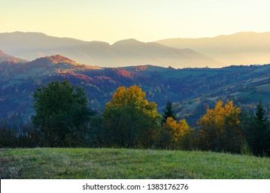 wonderful autumn landscape at dawn.  beautiful countryside scenery in mountains. trees in colorful foliage. rural area of carpathians. distant ridge in glow of sunlight