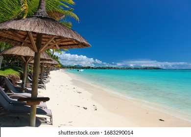 Wonderful beach on Mauritius with palms and white sand