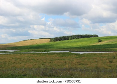 a wonderful bright landscape with a deciduous and coniferous forest and a spacious valley with luscious green grass.