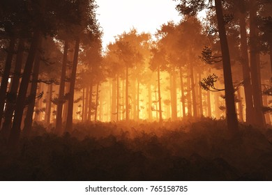 Wonderful Deep Forest 3in the Sunset Sunrise D Illustration