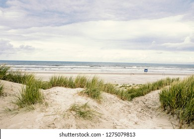 Wonderful dune beach on the North Sea island Langeoog in Germany with sky, clouds, sand and grass on a cold and windy summer day