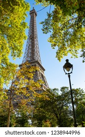 Wonderful and fantastic view behind trees of the Eiffel tower in Paris France with a lamp as a juxtaposition.