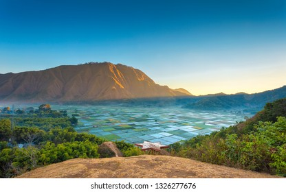 Wonderful farmland scenery at Pergasingan Hill, Sembalun. View from Bukit Selong near Rinjani volcano in Lombok, Indonesia.