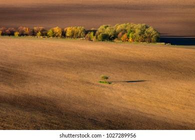 Wonderful fields near Liptovska Mara, Slovakia