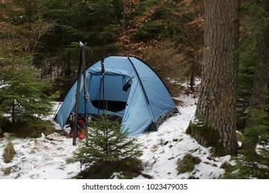 Wonderful forest background and camping and skiing equipment in foreground.