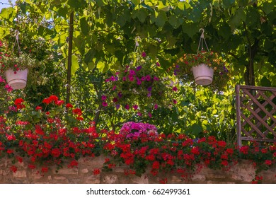 Wonderful garden with many flowers in Italy