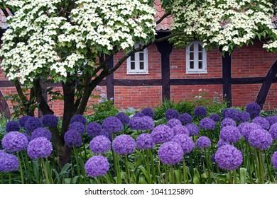wonderful garden at springtime