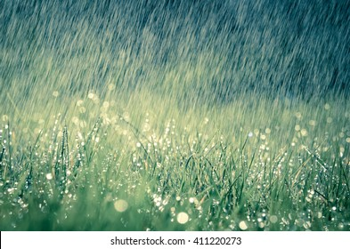 Wonderful heavy rain shower in the sunshine of springtime or summer enjoy the relaxing nature