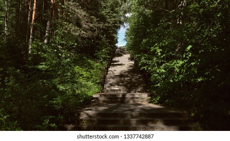 A wonderful high concrete staircase up the hill on a sunny summer day in a shady green forest at the Holiday Inn in Russia
