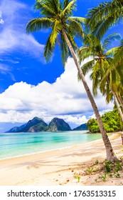Wonderful idyllic nature scenery - tropical beach with cocnut palm trees. El Nido. Palawan island , Philippines