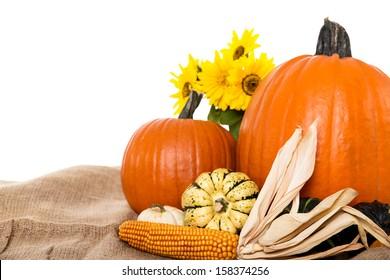wonderful isolated autumn background