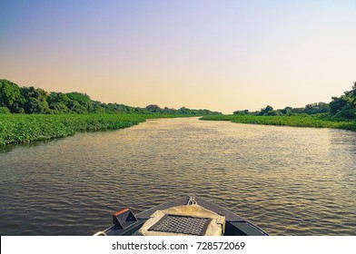 Wonderful landscape at sunset of a boat navigating through flooded waters of Pantanal. The boat passing by the aquatic green vegetation of the river Paraguai. Photo at Pantanal, Brazil.