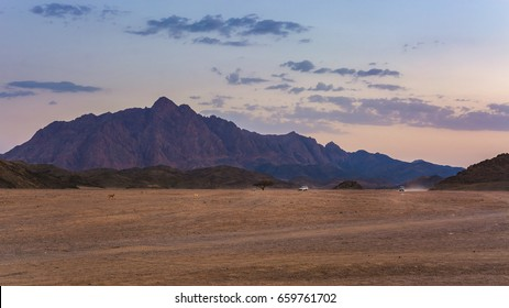Wonderful landscape,Arabian desert of stone, Egypt with mountains at sunset.To the right three jeeps for tourist travel.