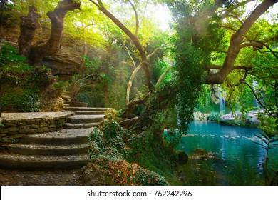 Wonderful magic waterfall mysterious background poster image