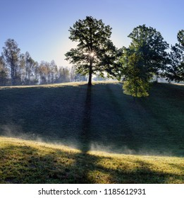 Wonderful morning landscape with tree. Sun rays pass through tree. Sunrise landscape with tree.