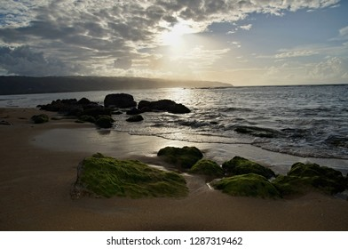 Wonderful Mossy stones on the beach Punta Bonitain sunsset light, Samana Peninsula, Dominican Republic.